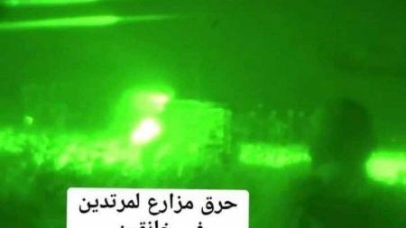 داعش ئاگر لە بەرهەمی جوتیارانی کورد بەردەدات